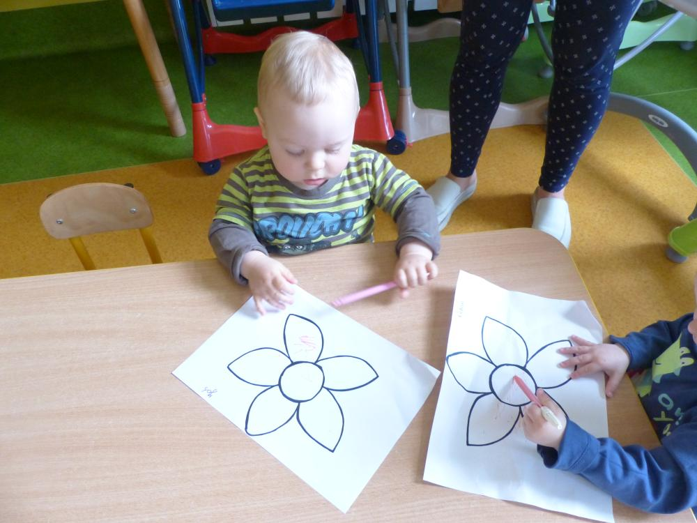 Przeglądasz zdjęcia z artykułu: Kolorowe kwiatki