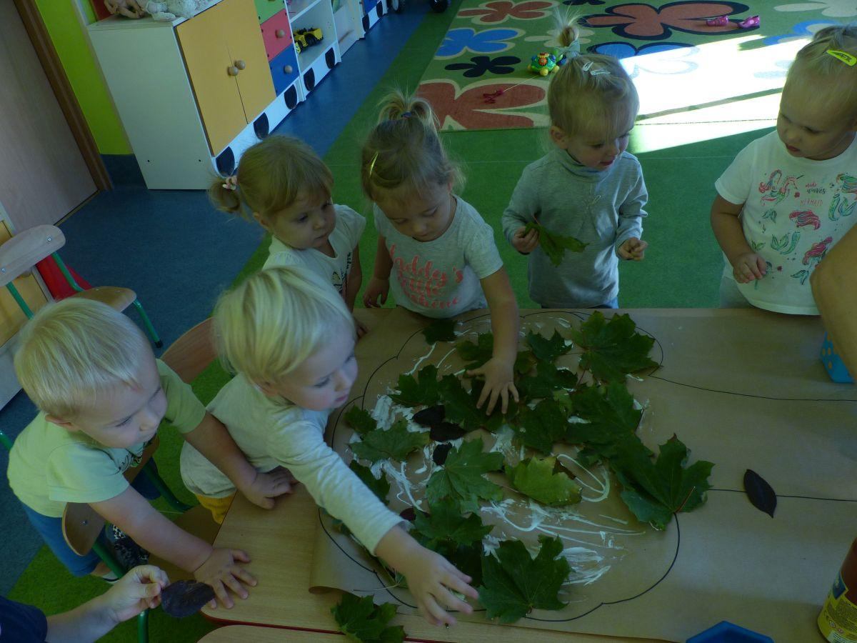Przeglądasz zdjęcia z artykułu: Jesienne drzewa